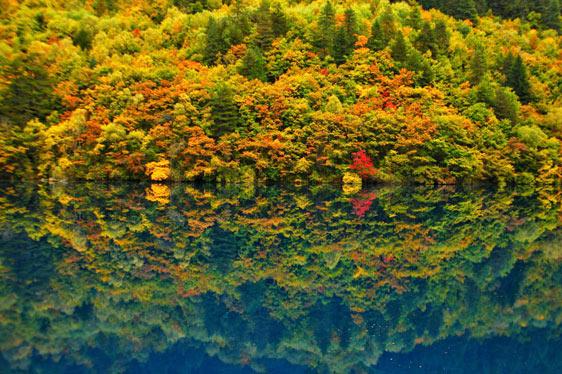 山水倒影彩林随