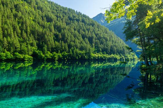 一湖平静倒影起
