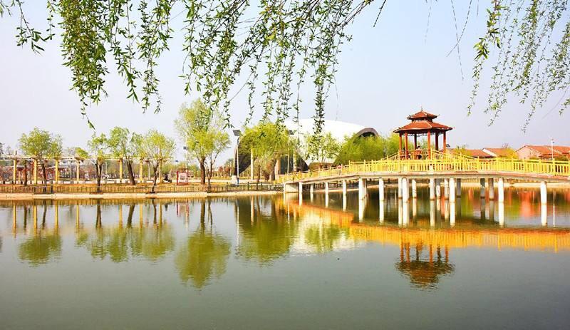 中原绿色庄园实景图片