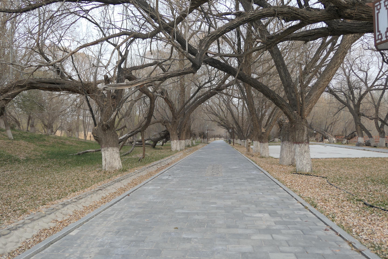 阿克苏燕泉公园